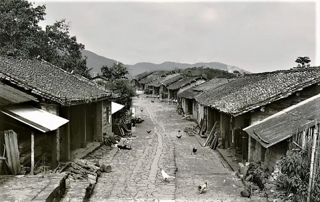 1992 Yang Ping Hao 11